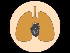 Aayushman Cardiorespiratory Physiotherapy